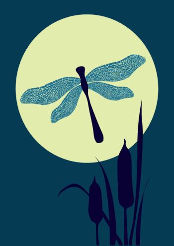 Dragonfly Moon