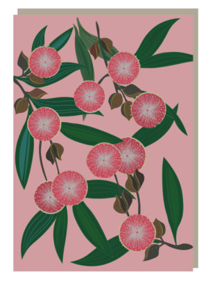 Hakea Blooms Greeting Card
