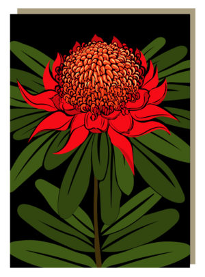 Waratah Greeting Card